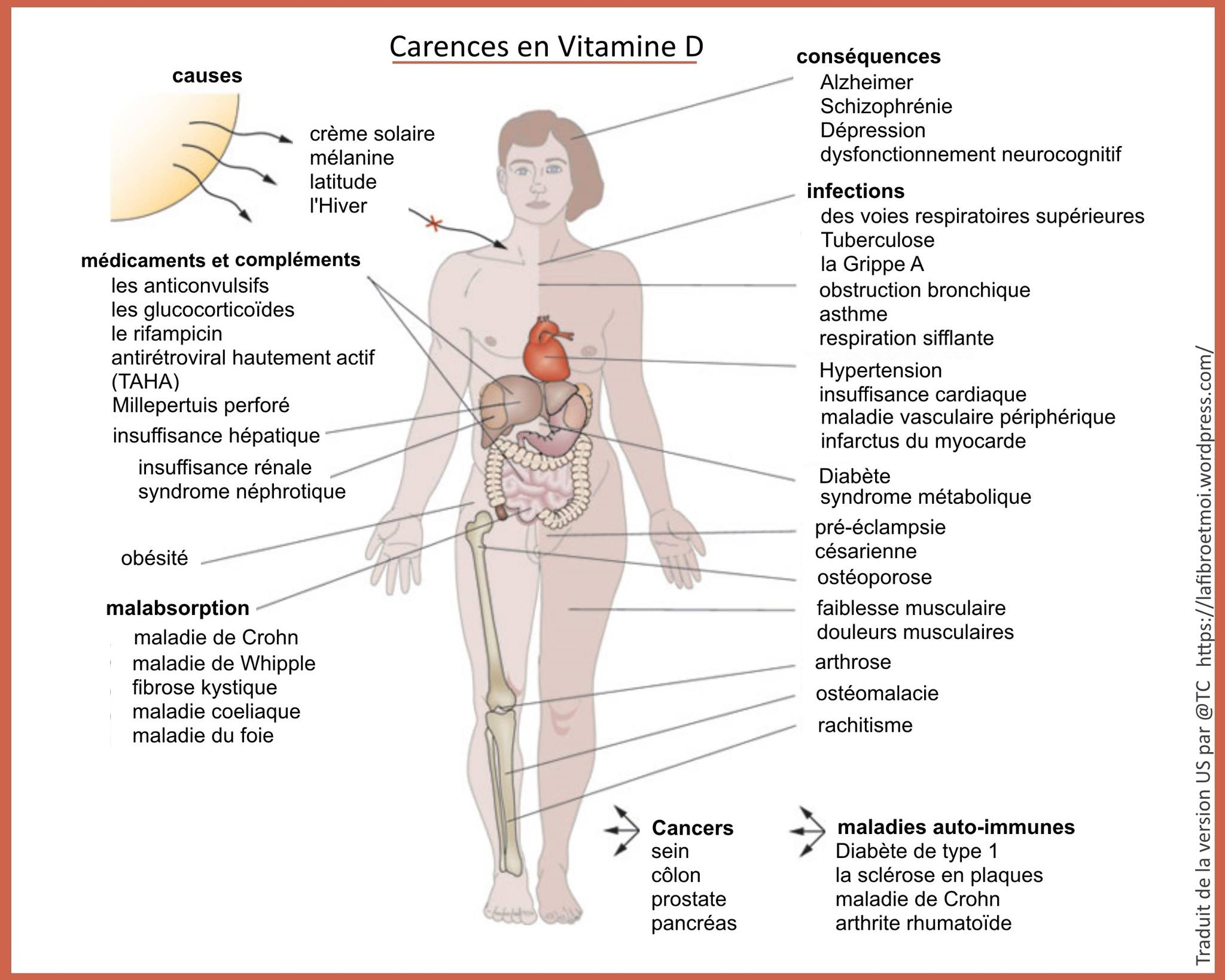 grosse carence en vitamine d symptomes