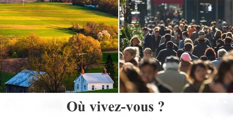 QUESTIONNAIRE DE 2 QUESTIONS